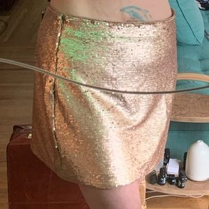 NWOT Champagne Sequence Skirt!